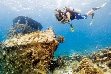 PADI Wreck Diver (погружение на затонувшие объекты)